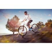 vélo assist électrique
